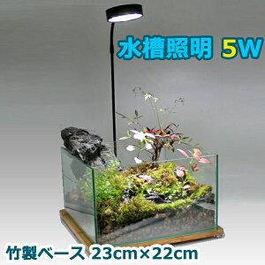 金魚 水槽照明 20cm 水槽 5W LED 竹製ベース アクアリウムライト 小型 角度調節可能 水草 植物育成 熱帯魚【即日発送】