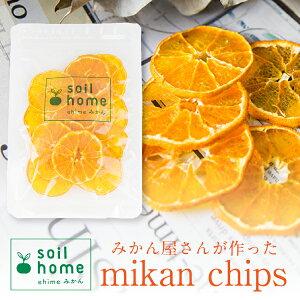 皮までまるごと!愛媛農家の手作りみかんチップス 砂糖不使用 無添加 保存料不使用