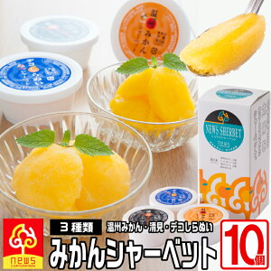 濃厚&なめらか!みかん専門店のシャーベット詰め合わせ《115ml×10個》定番の温州ミカン、甘いのにさっぱりとした清見タンゴール、濃厚な味わいのデコしらぬいの3種自社栽培の柑橘たっぷ