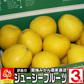 訳あり 河内晩柑 ジューシーフルーツ 3kg 国産 愛媛産 無添加 南の果樹園 ニュウズ