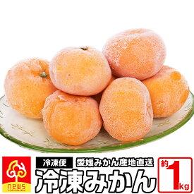 冷凍みかん 約1kg 国産 愛媛産 無添加 南の果樹園 ニュウズ