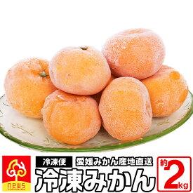 冷凍みかん 約2kg 国産 愛媛産 無添加 南の果樹園 ニュウズ