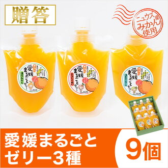 Ehime whole jelly three nine (175 g x 9) Ehime industrial / nishiu Japanese production / Orange / Tangerine / Orange jelly / fruitzery / jelly / Wenzhou oranges and Qing found tangor / Deco Shiranui hospital / dekopon gifts for gift / gift-giving / gifts