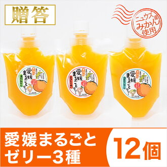 Ehime whole jelly three 12 pieces (175 g x 12) Ehime industrial / nishiu Japanese production / Orange / Tangerine / Orange jelly / fruitzery / jelly / Wenzhou oranges and Qing found tangor / Deco Shiranui hospital / dekopon gifts for gift / gift-giving /