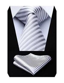 (ヒスデン) HISDERN 洗える ネクタイ セット ビジネス用 ネクタイ チーフ セット 無地 チェック柄 ストライプ 結婚式 二次会 披露宴 プレゼント Free 12 シルバー/ホワイト