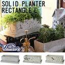 SOLID PLANTER RECTANGLE L (ソリッド プランター レクタングル L )コンクリート プランター ガーデニング 園芸 お洒…