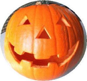 ★ハロウィン用かぼちゃ★がっつり彫るなら【特大LLサイズ1玉】カービング可!米国産***順次発送します。配送指定可!***◎