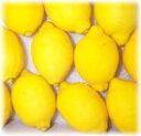 ★直輸入レモン1個/Mサイズ