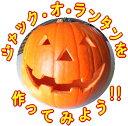 カーヴィング用ハロウィンかぼちゃ★米国産ファミリーLサイズ!