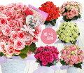 【60代】母の日にピッタリの鉢植えで可愛い花は?【予算5,000円】