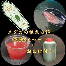 【売切御免】メダカの稚魚の餌 最強8点セット+おまけ付き 生体 【タマミジンコ・ゾウリムシ・PSB光合成細菌・生クロレラなど】