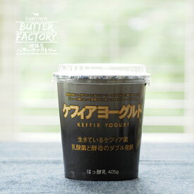 ケフィアヨーグルト 種菌 発酵食品 プレーン 無糖 ケフィア ヨーグルト 乳酸菌 酵母 はっ酵食品 お取り寄せ
