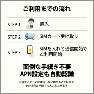 プリペイドsim日本softbankプリペイドsimカードsimカードプリペイドsimcard10GB15日マルチカットsimMicroSIMNanoSIMソフトバンク携帯携帯電話