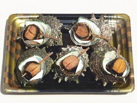 ボイルさざえ 栄螺 冷凍 美味しい お得 お値打ち品 業務用 お土産 ギフト 長崎産 贈り物 海鮮