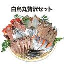 お歳暮ギフト 贅沢セット お歳暮 送料無料 干物 干物セット 冷凍 美味しい ギフト 贈り物 干物 海鮮 金目鯛 えぼ鯛 鯵 秋刀魚 イカ 真…