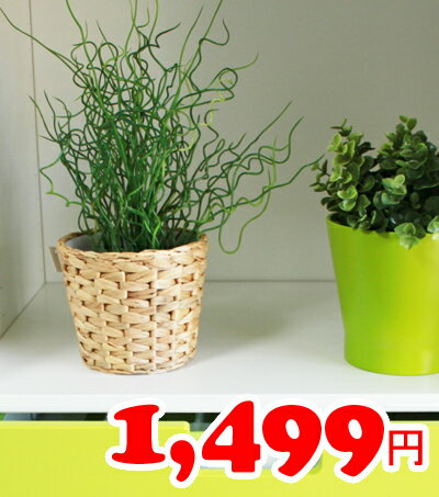 【IKEA】イケア通販【FRIDFULL】鉢カバー14cm(高さ:16 cm,内径:15cm)