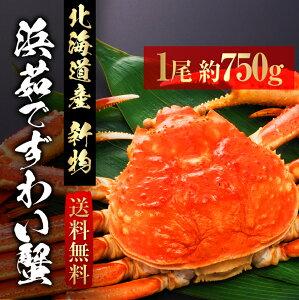 浜茹でずわい蟹 北海道産 送料無料 一尾約750g ずわいがに ズワイガニ カニ かに