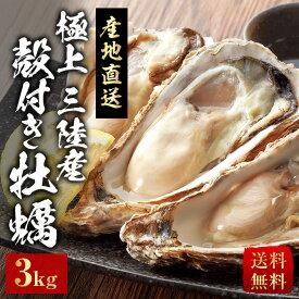 殻付き牡蠣 極上三陸産 産地直送 送料無料 3kg お中元 ギフト