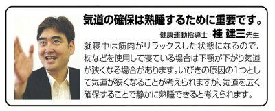 イビピタンネックピロー2個組【新聞掲載】