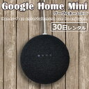 Google mini 30day