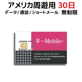 【SALE特価】アメリカ SIM T-Mobile プリペイドSIM SIMカード 30日間 データ容量 無制限 音声通話 SMS代込み