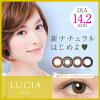 [콘택트 렌즈]LUCIA 1DAY Natural Black(사용 기간:1일 / 내용량:10 장 )