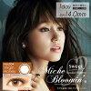 [彩色隱形眼鏡]Miche Bloomin Virgin Honey (使用週期:每日 | 計價單位:30片/盒)
