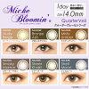 [彩色隱形眼鏡]Miche Bloomin Shell Moon (使用週期:每日 | 計價單位:30片/盒)