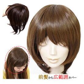 前髪 ウィッグ ヘアピース 耐熱 ストレート 送料無料 かつら 部分ウィッグ ポイントウィッグ つむじカバー 人気
