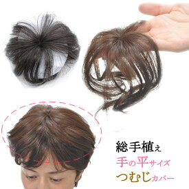 ウィッグ かつら ヘアピース 耐熱 部分ウィッグ ポイントウィッグ 増毛 総手植え つむじカバー tp185