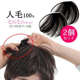 ウィッグ ヘアピース 人毛100% 総手植え 円形脱毛症 部分ウィッグ ポイントウィッグ 増毛 送料無料 つむじカバー kz1