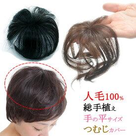 ウィッグ 人毛 ヘアピース トップ 人毛100% 部分ウィッグ ポイントウィッグ 増毛 総手植え つむじカバー tp185hh