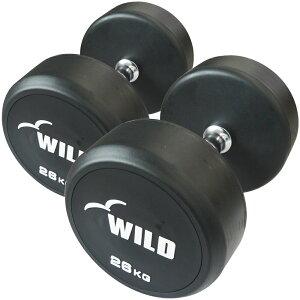 固定式ダンベル 26kg WF 2本セット[WILD FIT ワイルドフィット] 送料無料 ダンベル ウエイト 筋トレ トレーニング 腹筋 背筋 ベンチプレス ジム 鉄アレイ フィットネス