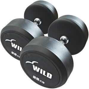 【楽天スーパーSALE&39ショップ】固定式ダンベル 28kg WF 2本セット[WILD FIT ワイルドフィット]送料無料 ダンベル ウエイト 筋トレ トレーニング 腹筋 背筋 ベンチプレス ジム 鉄アレイ