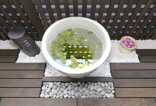 信楽焼・睡蓮鉢「雅」丸型40サイズ・白【陶器製】