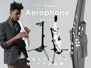 Roland_AerophoneAE-10G