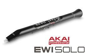 【次回納期2021年12月末予定】【新製品】AKAI Professional アカイ EWI SOLO【送料無料】