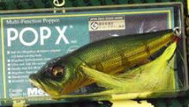 POPX (BACK TO THE GARAGE) GG ピーコック