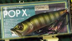 POPX (BACK TO THE GARAGE) PM BG