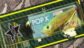 POPX (SP-C) SS LAM POP