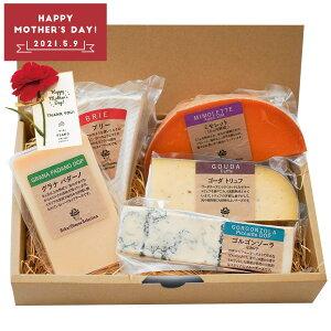 チーズ おつまみ 詰め合わせ ギフト セット 5種類 ゴーダトリュフ ゴルゴンゾーラ ブリー ミモレット グラナパダーノ 食べ比べ 母の日 誕生日 プレゼント ワインに合う ワイン ブルーチーズ