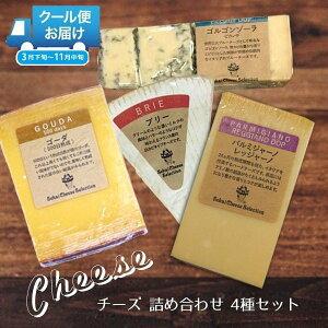 チーズ 詰め合わせ おつまみ お得 世界のチーズ 4種 パルミジャーノレッジャーノ ブリー ゴルゴンゾーラ ゴーダ