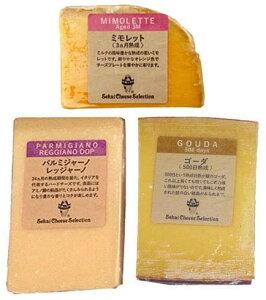 赤ワインに合う チーズ セット 詰め合わせ ワイン おつまみ ハードチーズ ミモレット3カ月熟成 パルミジャーノ レッジャーノ ゴーダチーズ500日