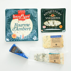 ブルーチーズ 詰め合わせ 食べ比べ 5種類セット ゴルゴンゾーラ ロックフォール スティルトン 世界三大 cheese おつまみ 貴腐ワインに合う 甘口ワインに合う 料理 パスタソース アソート
