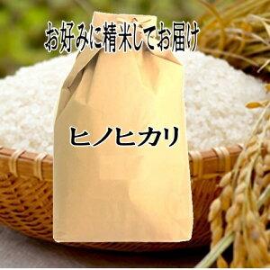玄米仕立 滋賀県産ヒノヒカリひのひかり令和元年産玄米10kgお好みに精米してお届け【送料無料 一部除く】