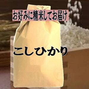 新米 玄米仕立 徳島県産コシヒカリこしひかり令和2年産玄米5kgお好みに精米してお届け【送料無料 一部除く】