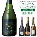【送料無料】高級シャンパンを探せ!第44弾!! トゥルベ トレゾール! サロンが当たるかも!? プレミアムシャンパーニュ…