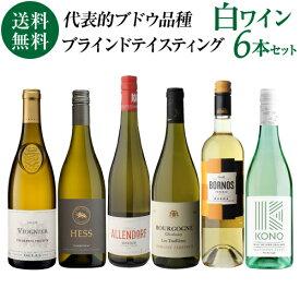 1本当たり1,247 円(税込) 送料無料 ソムリエ試験対策用ブラインドテイスティング白ワイン6本セット第1弾 750ml 6本入各産地飲み比べ 白ワインセット