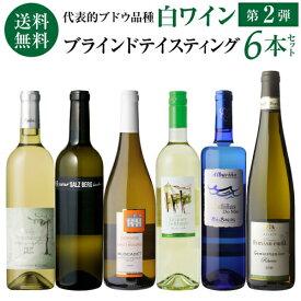 1本当たり1,430円(税込) 送料無料 第2弾 ソムリエ試験対策用 ブラインドテイスティング 白ワイン6本セット 750ml 6本入各産地飲み比べ 白ワインセット<P7対象外>
