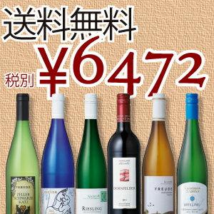 人気商品がぎゅっと凝縮!厳選ドイツワインセット 750ml×6本